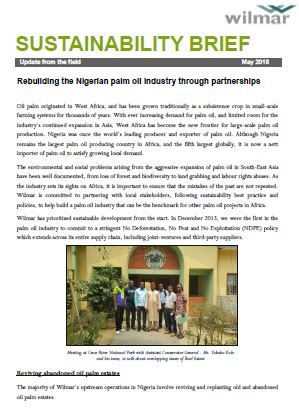 Partnering with Nigeria to Develop